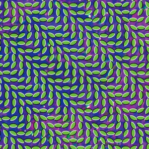 #36 Animal Collective – My Girls (2009)