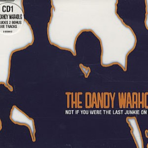 #29 The Dandy Warhols – Not If You Were the Last Junkie on Earth