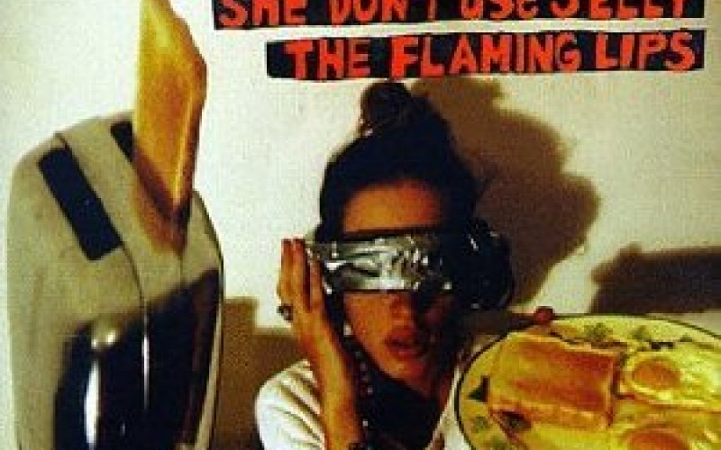 #14 The Flaming Lips – She Don't Use Jelly