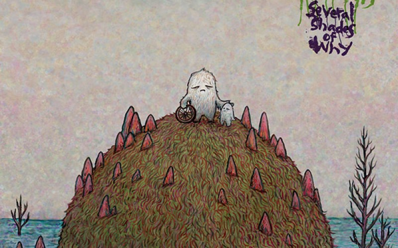 J Mascis – Several Shades of Why