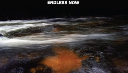 Male Bonding – Endless Now (Sub Pop)