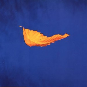 #4 New Order – True Faith