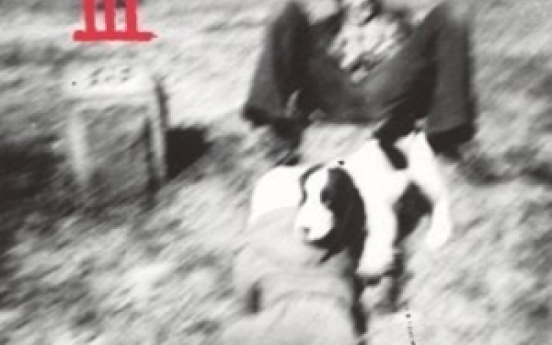 #12 Sebadoh – The Freed Pig