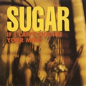#23 Sugar – If I Can't Change Your Mind
