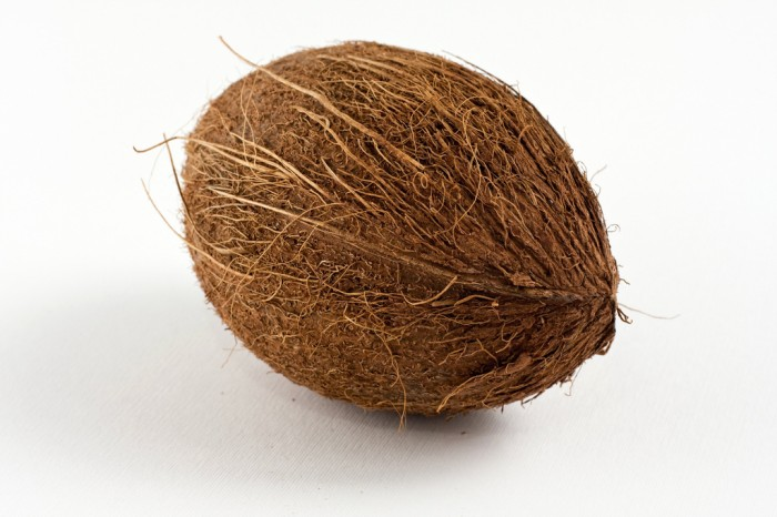 Oval shaped brown coconut