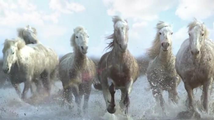 2010-luvun hiphopin tärkeimmät hevoset eivät laukkaa, koska Tumblrissa ei ollut .gifiä.