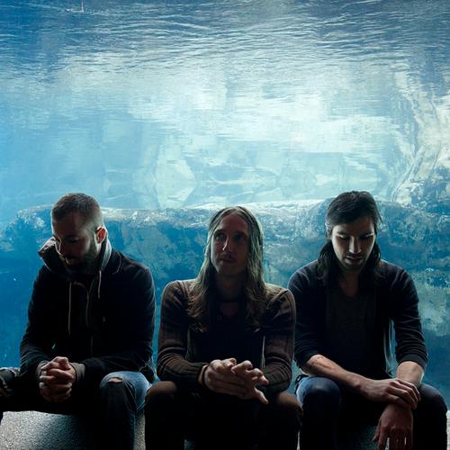 Brian Cook (vasemmalla) soittaa kuvasta päätellen underwater-musiikkia.